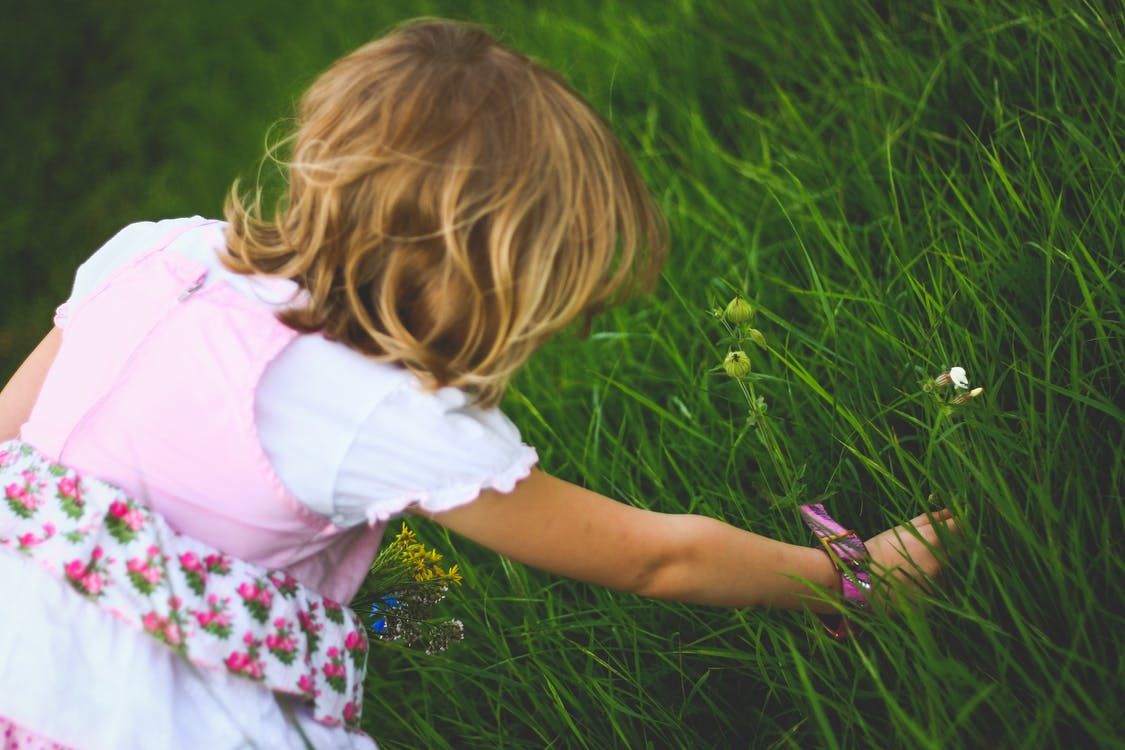 Gardening Activities You Can Do With Your Kids
