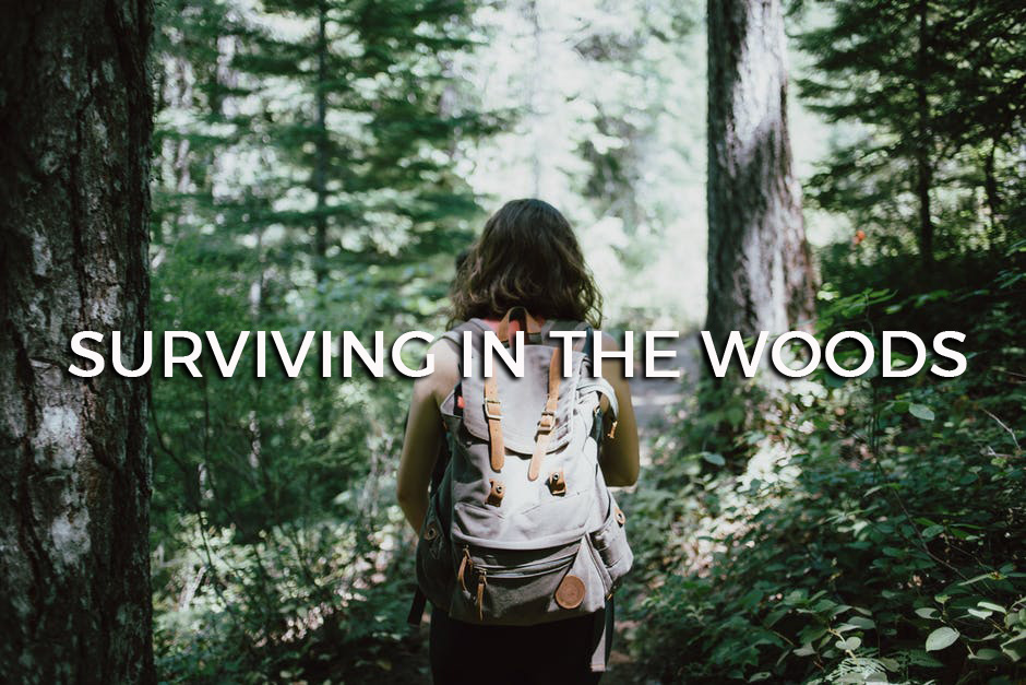 Surviving in the Woods